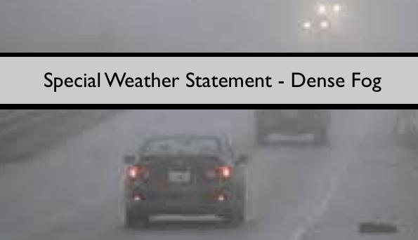 Special Weather Statement - Dense Fog