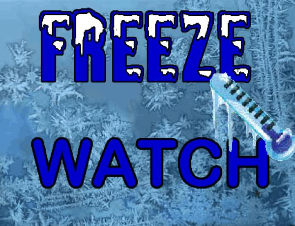 Freeze Watch Issued for Stoddard County