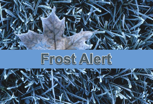 Widespread FROST Possible on Wednesday