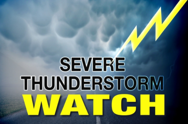 Severe Thunderstorm Watch Issued for Stoddard County, MO